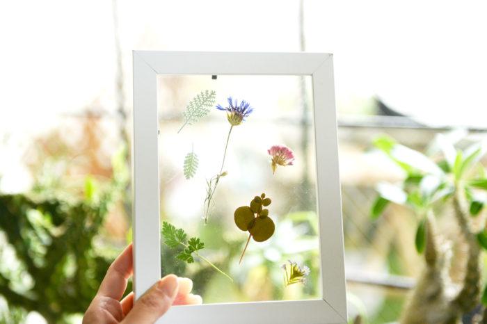 最近ではスマホケースやネイルなど、様々な場面で利用されている押し花。  自分の好きな花で押し花を作りたい!という方へ、作り方をご紹介。自分だけのオリジナルグッズを作ってみましょう。