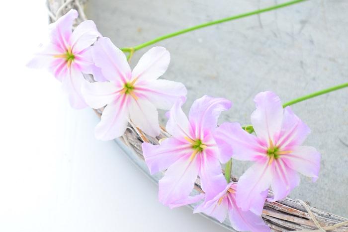 主役ではないけれど、花のサイズが小さくてかわいい小花は、小さな花あしらいにおすすめ。食事をするテーブルに、さりげなく飾ってみては。