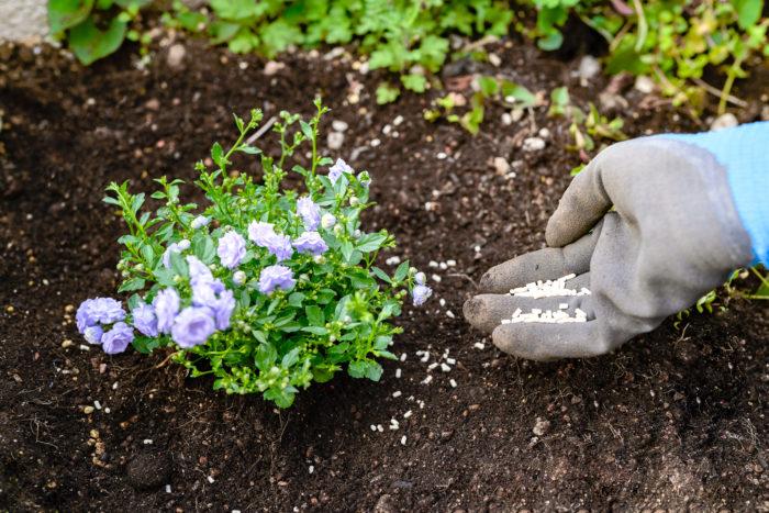 もちろん花壇にも使えます。守りたいお花のまわりに撒いてください