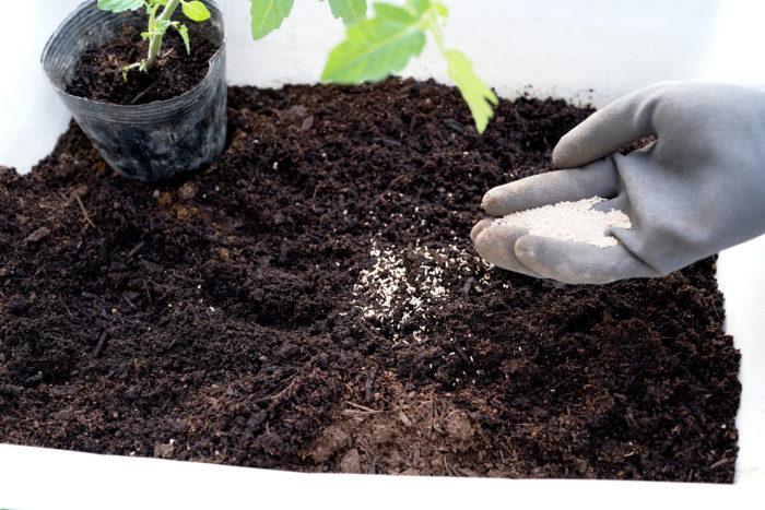 まずお勧めしたいのが、ベニカXガード粒剤を病害虫の予防として使うパターン。そろそろ病害虫が出はじめるという春先や秋口に、植物を植え付ける時に一緒に土に混ぜ込みましょう。病害虫発生前に先回り予防をすることで、被害軽減に効果的です。