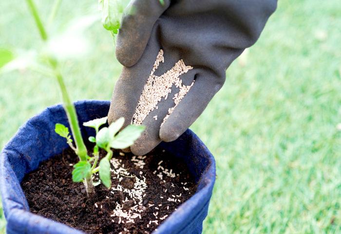 植物を植えた後からの使い方はさらに簡単! 植物の株元の土にばらまくだけでオーケーです。ただばらまくだけで植物の病気予防や害虫駆除できるなんて、夢のようですね。