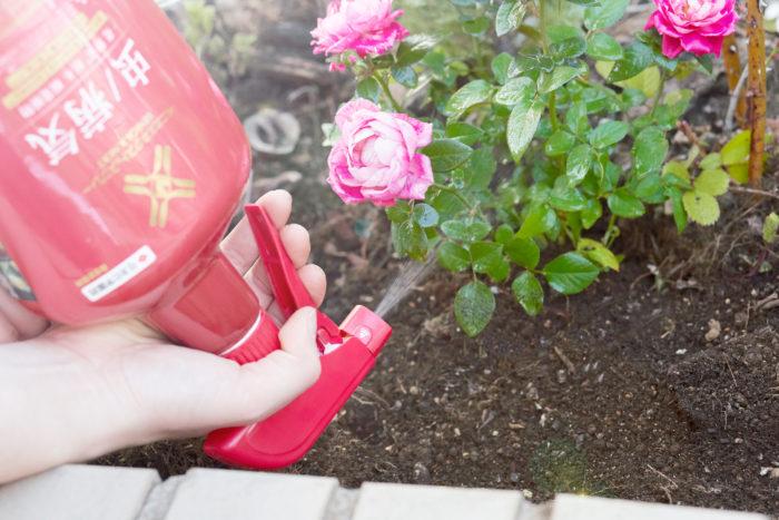 逆さ散布で葉の裏側や、手を入れづらい地面に近い場所にもまきやすい!
