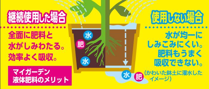 マイガーデン液体肥料は、植物の種類によって1週間に1回、または2週間に1回与えると、肥料としての効果はもちろん、水が浸透しやすいうるおいのある土に変えていく効果もあります。土のすみずみにまで肥料成分と水分がしみわたるようになるので、効率よく肥料が吸収されるようになりますよ。