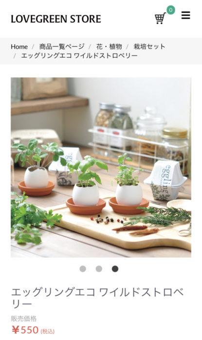 LOVEGREEN STOREでは、写真のような底皿も別売りで販売しています。  こんな感じで並べて栽培してもかわいいですよね!