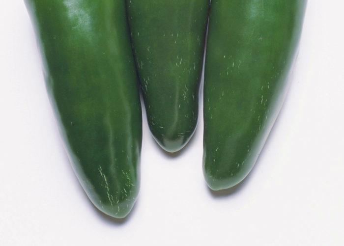 ちなみに、こどもピーマンには食べごろのサインがあります。成熟直前には糖度が高まり、果実の表面にヒビが発生するので、収穫の目安にするといいでしょう。