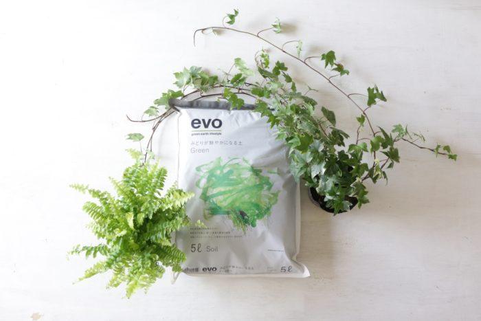 evoは、腐植とオーガニック肥料が入った培養土。これらの成分が植物をイキイキとさせる秘訣なのです。植物の生長を助ける栄養成分入りの軽くて清潔な土。観葉植物の土として、室内でも安心して使えます。2L、5Lからお選びいただけます。
