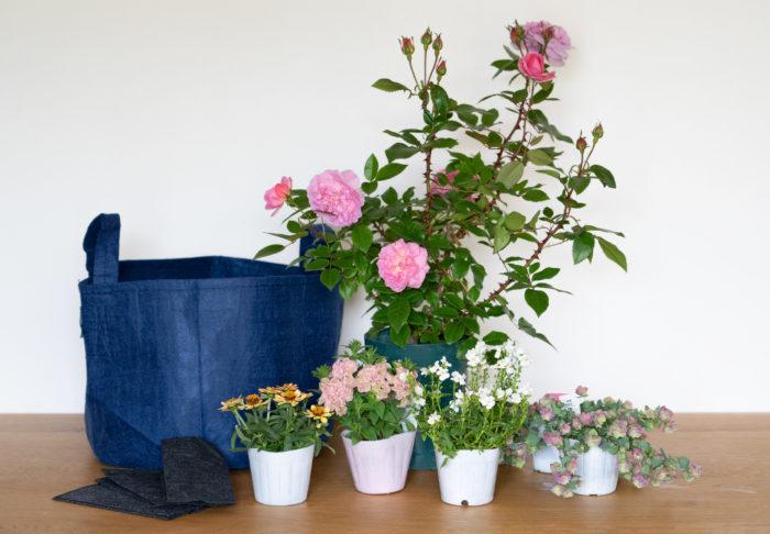 まずはオーソドックスな組み合わせから。手に入りやすい草花とフルーリーテラスの組み合わせに挑戦です。