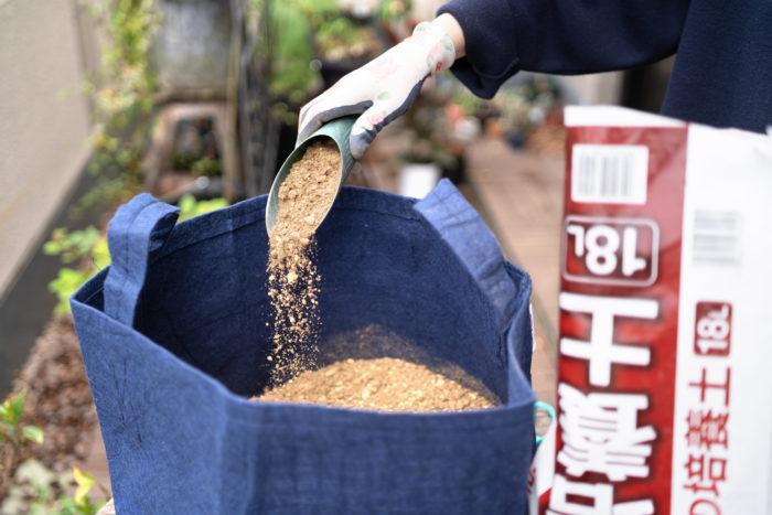 1.まずは一番大きなルーツポーチ(LLサイズ)に半分程度まで土を入れていきます。