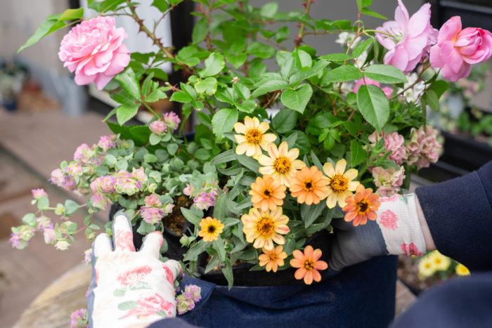 草花が枯れたときは、植えてあるルーツポーチごと引き抜いて、新しい植物を植えたらまた元に戻せばOK。管理もとっても簡単です。
