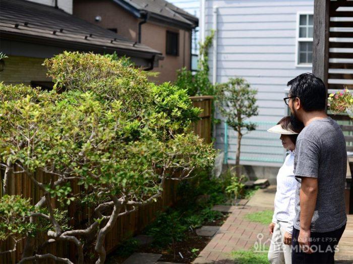 今回は、和風のお庭に合う目隠し方法についてミドラスの施工事例をまじえながらご紹介しました。