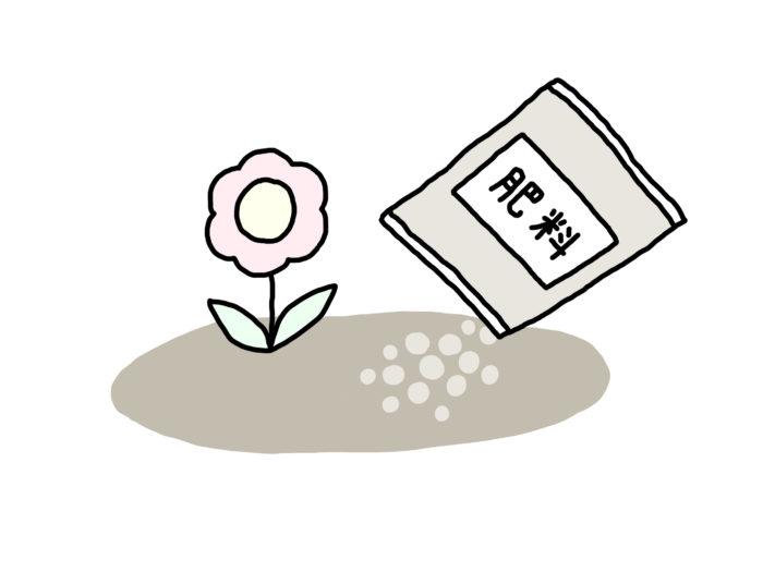 花や野菜が根を張ったり、生長して、花を咲かせたり、果実を実らせたりする際には栄養が必要。人間でたとえるとご飯ですね。この栄養が不足すると当然植物はうまく育ちません。対処方法は多くの人がご存知の通り肥料を与えることになります。