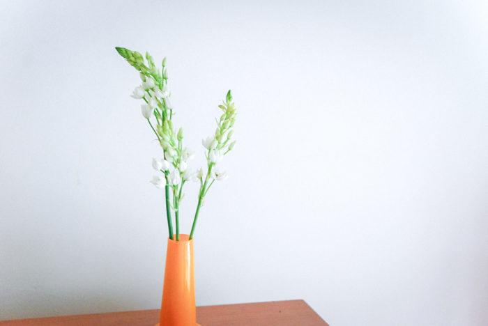 """日持ちするお花の代表選手のような""""オーニソガラム""""。星型をした白い花が、下から上までしっかりと咲いていきます。清涼感のあるお花が一つずつ咲いていくのを楽しめます。"""