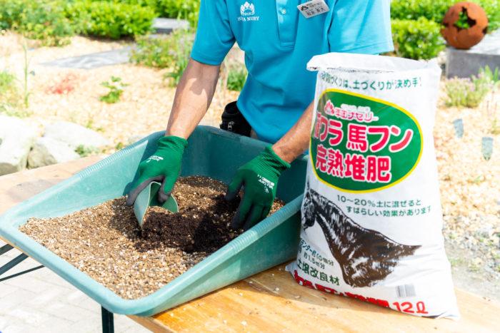 まずは、稲ワラ馬フン完熟堆肥を使います。稲ワラをベースに馬フンを発酵完熟させた堆肥で、稲ワラの繊維が非常に良い菌を繁殖させてくれます。根っこが快適に過ごせるフカフカの土質にしてくれますよ。