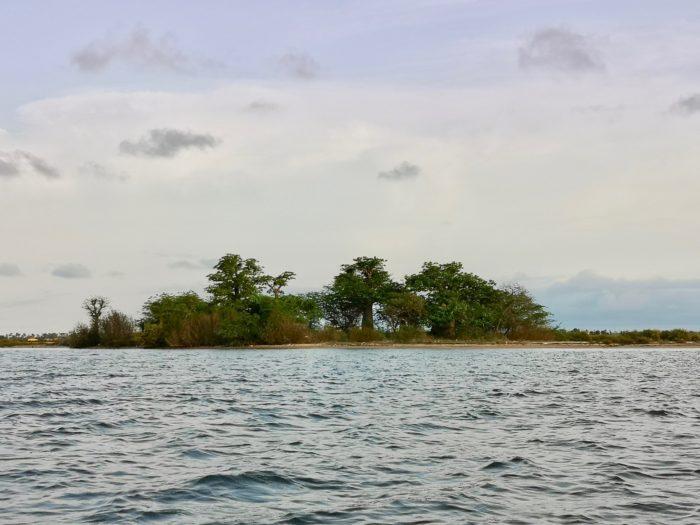 途中には、人が住んでいないような小島があり、バオバブの木が立っている。とても素敵な光景。できることなら、ここでバオバブや訪れる鳥たちと共に住んでみるというような、とびっきりの贅沢をしてみたいとさえ思える。