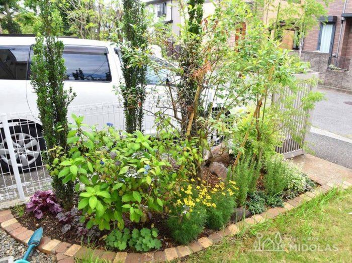 こちらは駐車場の隣の花壇。