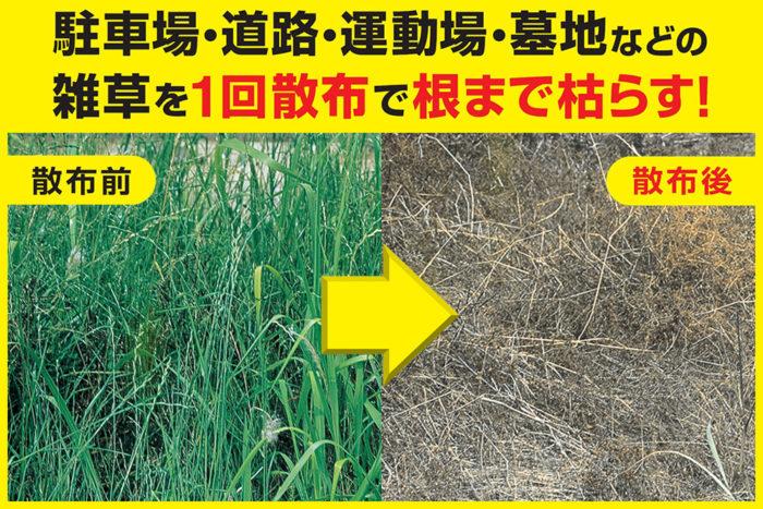 ちなみに上の写真は、「ウィードコロン」の使用前/使用後の様子。雑草が見事に枯れています。広い範囲の雑草も1回の散布ですっきり除草できちゃいます。