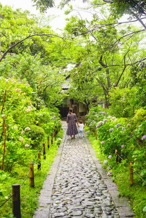 """ずっと行ってみたかった鎌倉山にある""""らい亭""""へ、家族でお蕎麦を食べに行きました。入り口の大きな山門を抜けると、まだまだ綺麗な紫陽花の小道が。そこから四季折々の草花が揺れる庭園を回遊して、お蕎麦屋さんへ到着しました。こちらのお店は、一階がお蕎麦やさんですが、2階では会席料理が楽しめるそう。"""