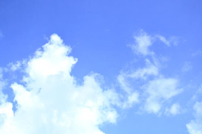 年々気温が上昇して熱帯かと思うほどの日本の真夏。気温が30℃くらいまでなら問題なく夏越しできた植物も、35℃以上の日が続くと「夏バテ」を起こしてしまいます。そうならないための対策を梅雨が明けるまでに済ませておきましょう。