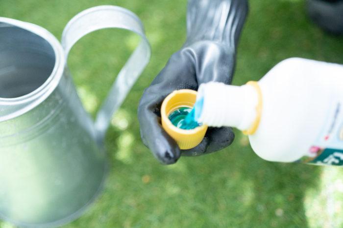 使い方は、普通の液体肥料と全く同じ。週1回、規定の倍率に水で希釈して、植物の株元に与えるだけです。