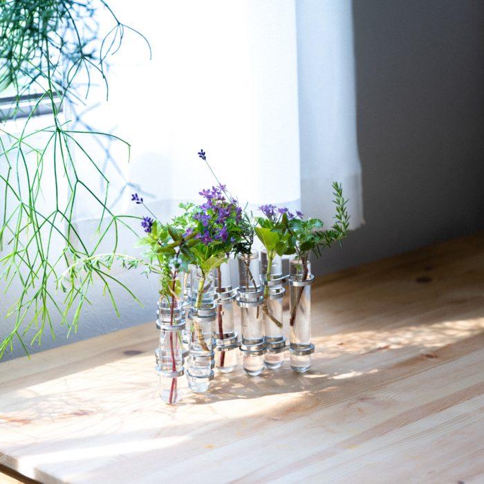 まるで試験管のようなユニークな形。  お庭やベランダのプランターで咲く小さな花、毎日切り戻して小さくなった花。最後の最後まで美しく咲く花を花瓶に飾って身近な暮らしの中に取り入れてみませんか?
