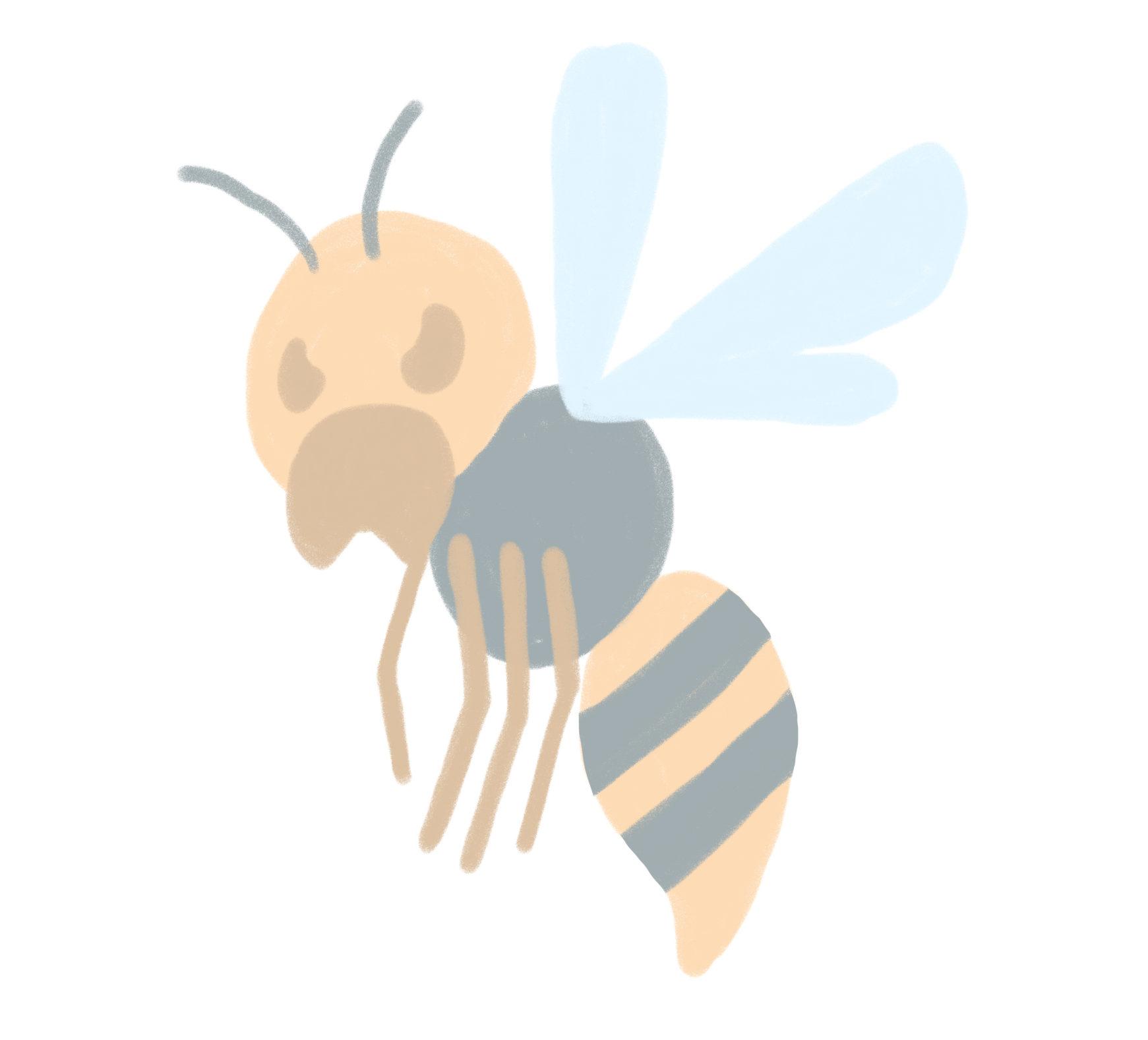 家周りで見かけるハチには、スズメバチ、アシナガバチ、ミツバチなどがいます。特に7月~10月の巣が発達する時期には攻撃的になり、刺される被害も増大します。刺されると痛みやかゆみが生じ、アナフラキーショックによって生命を脅かす危険な状態になることもあります。