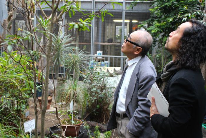 """私は、世界の植物について研究をしていた時に神戸大学の教授から湯浅先生をご紹介いただき、研究所を訪れた時に、湯浅先生に""""百聞は一見に如かず""""、近くマダガスカルへ研修ツアーにいくのでついてきなさいとお声掛けいただいたのだ。  そして様々な活動を通じて今では同研究所の客員研究員にまでしていただいている。まさに又右衛門の師である。  湯浅先生は、マダガスカルへは60数回訪れ、一昨年にはマダガスカル共和国からの勲章を受章されるほどの方であり、マダガスカルの植物においては分布や特性など全てにおいて熟知されており、その知識の豊富さには驚かされる。  さて、本題に入っていくのだが、今回の世界の植物紀行マダガスカル編では、植物にポイントを置き、そのキーとなる都市ごとにご紹介させていただければと思う。  まずはマダガスカルを効率よく堪能するには、やはりツアーに参加するのが良いかもしれない。特にバオバブなどの植物についての見識を高めたいのであるなら湯浅先生が同行する研修ツアーがおすすめである。それか観光がメインの場合は普通の旅行会社が主催するツアーの参加が便利であろう。というのはマダガスカル国内の交通はトラブルが多いためアクシデントがあった際には、ある程度の対応能力が必要となるためである。その辺は気にならず、時間に余裕をもっていくことができる方は、単独での渡航でも良いかとは思う。  それでは、マダガスカル編の始まり始まりである。"""