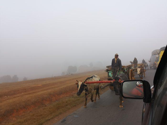 途中、モヤの中から飛び出すように見えてくる牛車に脅かされる。さらに厳しい山道と疲れのせいか、車酔いに悩まされる。