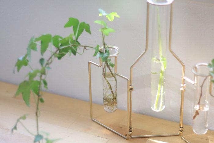 生花はもちろん、グリーンもよく映える一輪挿し「スタブルワイヤーフラワーベース」。アイビーの水耕栽培にもおすすめのアイテムです。