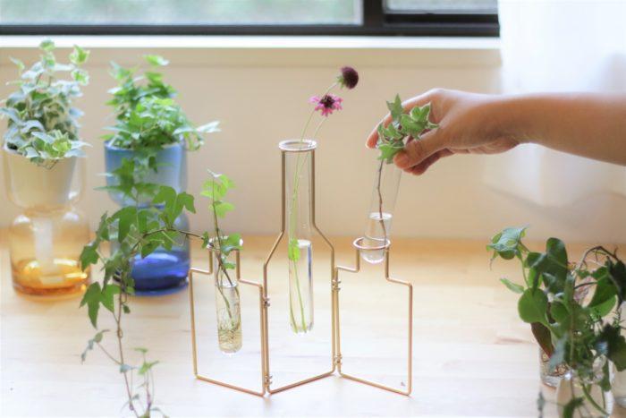 試験管のようなスリムな花瓶は出し入れしやすく、水替えが必要な水耕栽培にぴったり。根の生長を観察しやすいのもポイントです。
