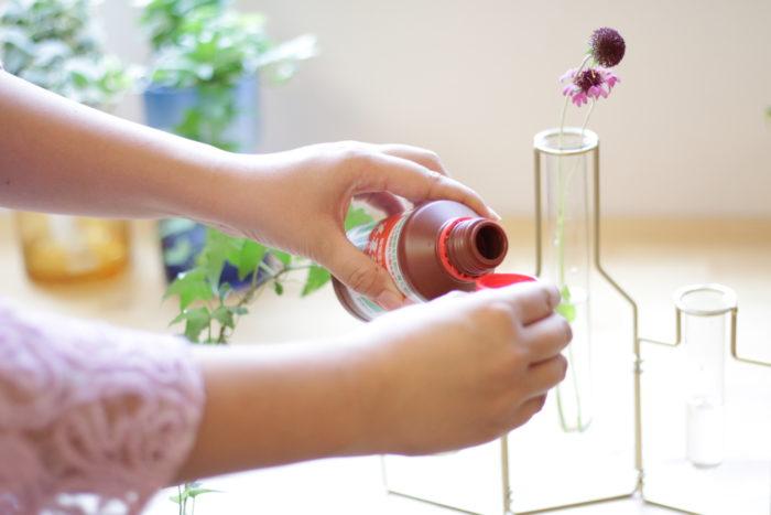 使い方は簡単。水耕栽培するとき瓶の水に垂らすだけ。観葉植物だけでなく球根の水耕栽培にもおすすめです。他にも、生花を生けるとき花瓶の水に少し混ぜるだけで花が長持ち。保持剤としての役目も果たします。幅広い用途があるため、植物を育てている人はひとつ持っていると便利。ぜひ一度その効果を体感してみてください。