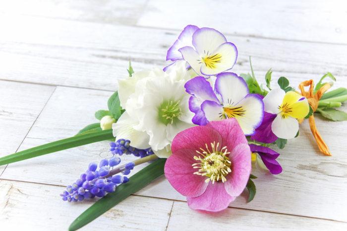 ▲ムスカリに、ビオラやクリスマスローズなどを合わせたミニブーケ</span></p> <p>チューリップやムスカリ、クッロカスなどの球根が咲けば、切り花として楽しむのもおすすめです。パンジーやビオラなどの草花と合わせて、自分だけのミニブーケをつくるのも贅沢な楽しみ。特別な日に花屋さんで買う花束とは一味違う、日々の暮らしのなかで楽しむ早春の切花。それも球根を育てる喜びのひとつです。