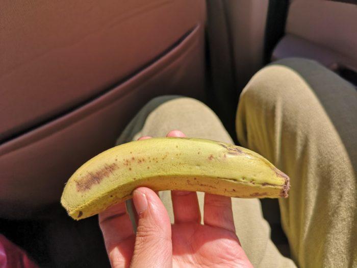 途中何とか木陰を見つけて、ランチ。今日はホテルで用意してもらったサンドイッチと途中で買ったバナナ。パンもシンプルで美味しいが、続いており少し飽きてきていたのでバナナがとても美味しく感じた。