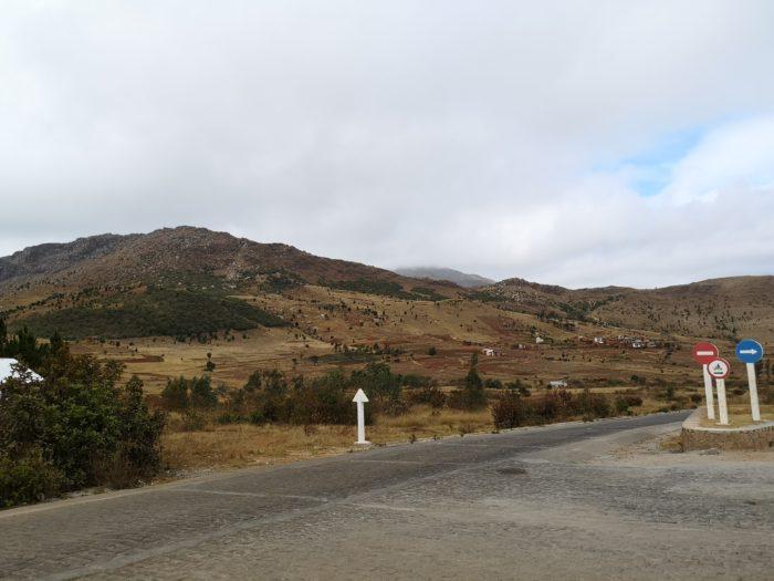 次の日は、ホテルに近いところにあるIBITY山へと向かった。ここにはネイティブプランツが自生している管理保護区域があるとのことで急遽訪問することにした。