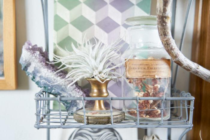 アンティーク調の蝋燭立ての上には、キャンドルの代わりにテクトラムをオン。棚にそのまま置くよりも接地面が少ないので、植物にいい環境に。