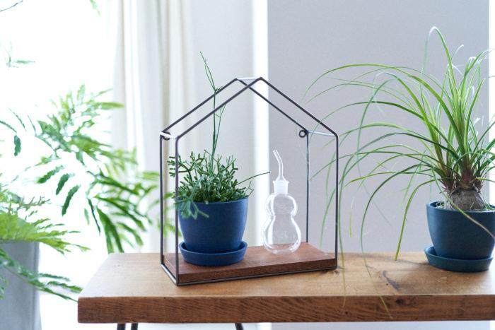 雑貨、植物、花瓶に生けたお花。ただそこに置くだけで空間を彩ってくれる存在ですよね。そこさらにワンポイントプラスしてみませんか?