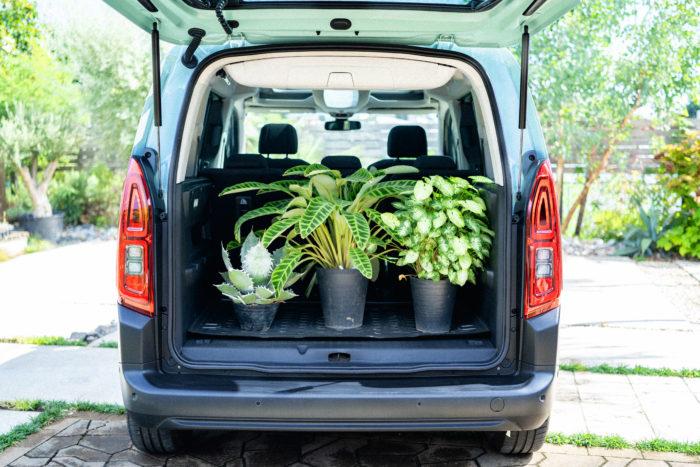 「植物の運搬車としても、十分な積載量! 広大なラゲッジスペースと、小物類を収納するたくさんの収納ボックスを兼ね備えているのは、他の車にはない魅力だと思います」