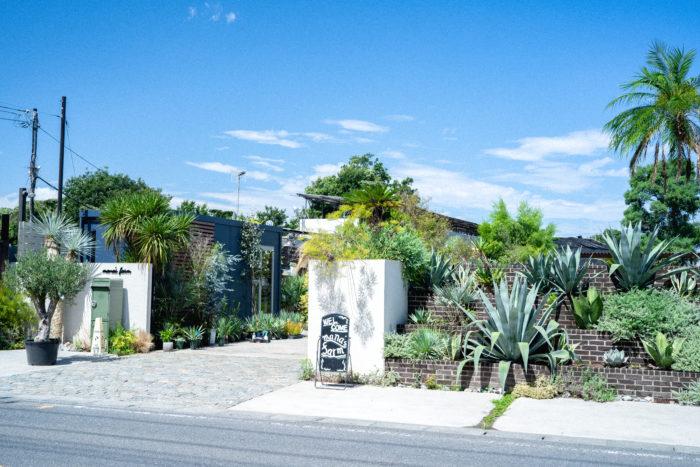 今回ベルランゴと一緒にお邪魔したのは、主にドライガーデンの相談・施工の窓口となっている埼玉県所沢市にあるmana's farm。ドライガーデンは30~40代を中心に人気の庭スタイルで、大型のアガベやユッカロストラータなど、乾燥に強い植物を用いたローメンテナンスでスタイリッシュな庭です。