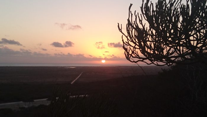 探索を続け、比較的地面ばかりを見ているうちに陽も落ち始めたので、モザンビーク海峡が望める小高い所に移動し、沈む夕日を堪能させていただいた。