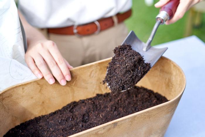 ①鉢の2/3まで土を入れます。