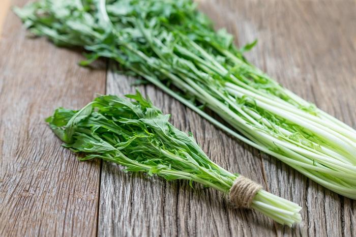水菜は春か秋に種をまいて、初夏か冬に収穫できる野菜です。葉物が少なくなる冬に明るいグリーンの水菜は重宝します。水菜は生食でも加熱調理しても食べられます。