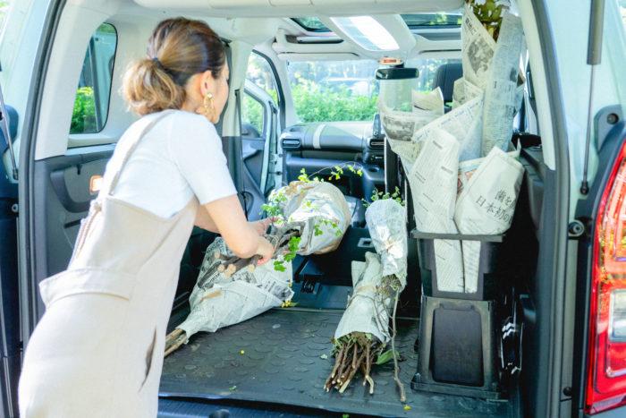 助手席を倒せば2.7mの長い切花や枝物も載せられます。実際にベルランゴを花屋のストアカーとして購入される方も多いらしく、納得の利便性でした。仕入れた花々はあっという間に積み込むことができました。