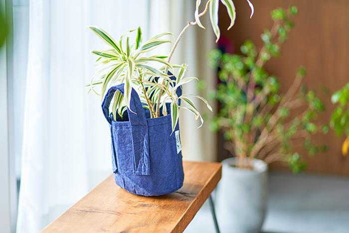 お掃除や部屋の模様かえをよくする方は、移動しやすい鉢カバーだとおしゃれ×利便性でおすすめ。