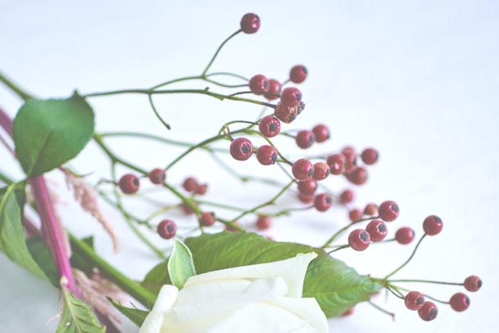 野バラの実は、寒い季節になってくるとお花屋さんに並び始める花材です。小さい実ながらも存在感は抜群。冬の時期に多く出回る葉物のブーケの全体を引き締めてくれます。