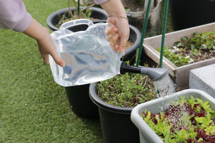 水やりに必須の道具です。おしゃれなジョウロがあると、日々の水やり作業も楽しくなります。