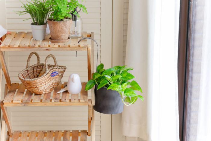 アイビーなどの横に生長する観葉植物は、吊るして飾ってあげるとより魅力的に。  そんな時はフックがあらかじめついた鉢カバーを準備していると、好きな場所にひっかけるだけで飾ることができます。