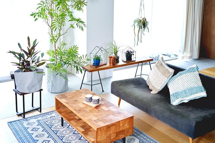 コバエを室内で発生させないためには、日頃から室内を清潔にしておくことが大切です。