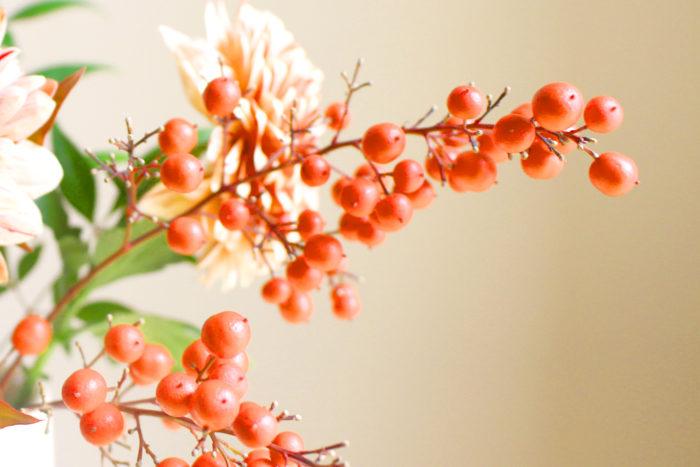 南天の赤い実と葉は、お正月に欠かせない縁起物。「難(ナン)を転(テン)ずる」にかけて、南天は昔から厄除け、幸運を招く木として好まれてきました。実が落ちやすいので生ける時に注意しましょう。