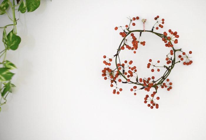 サンキライ(山帰来)は、昔は生薬として活用されていたそう。漢字で山帰来と書くのは、山で病にかかった人がこの実を食べて元気に帰ってきたことからこの名がついているようです。枝のラインに動きがあるので、賑やかな雰囲気にあしらうことができます。蔓の部分にトゲがある場合があるので注意しましょう。