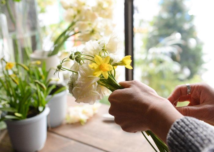冬を超え、春の香りを運んでくるスイセン。年末から3月ごろまでお花屋さんに並んでいます。茎をきった時に液が出た場合は洗い流しましょう。