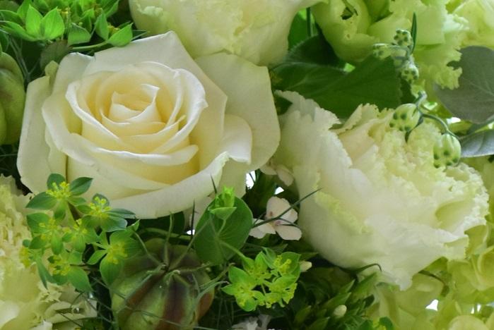 バラはトゲがあるという理由で、仏教や神道の葬儀では敬遠されがちでしたが、最近ではきちんとトゲを取ったバラが使用されるようになりました。